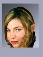 False Wood Elf Ears with Adhesive