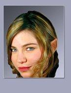 Wood Elf Ears, Costume