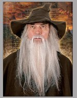 Wizard Real Hair Beard
