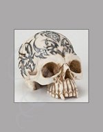 Celtic Tattoo Skull