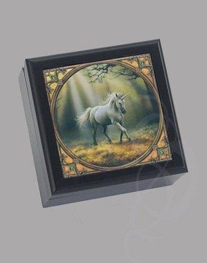 Unicorn Box